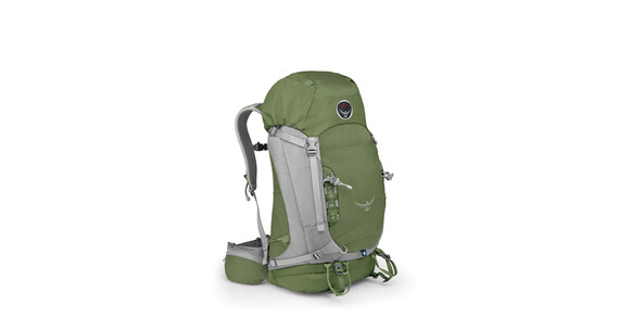 Osprey Kestrel 48 Gr. M/L conifer green